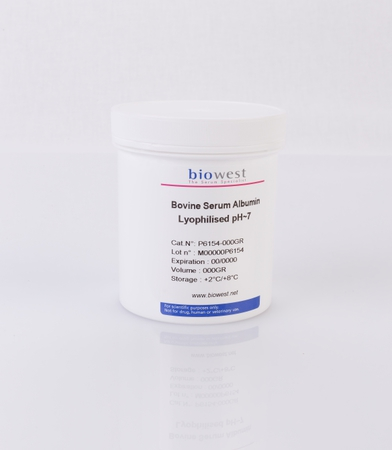 Bovine Serum Albumin (BSA) Lyophilised pH ~7 - Biowest, The Serum Specialist