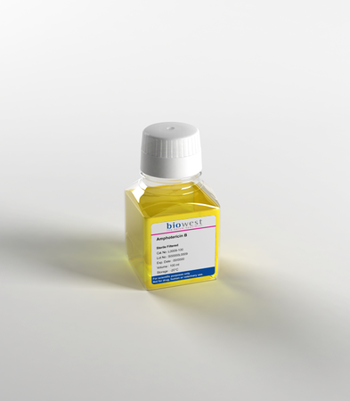 Amphotericin B 100X - Biowest, The Serum Specialist